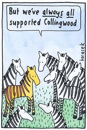 12-HORACEK-zebra-collingwood-col-300