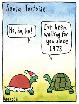horacek-21-santa-tortoise-col-300