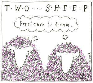 Horacek-02-two-sheep-perchance-F019-450