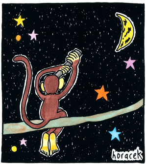 Horacek_13-banana-moon-col_300