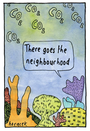 19-Horacek--Neighbourhood-col-300