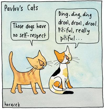 05Horacek-OL02-Pavlov's-Cats-col2400