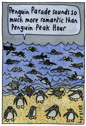 07Horacek-penguin-peak-hour-col300